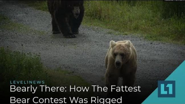 Embedded thumbnail for Level1 News October 25 2019: Bearly There: How The Fattest Bear Contest Was Rigged