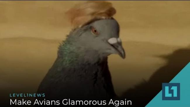Embedded thumbnail for Level1 News February 28 2020: Make Avians Glamorous Again