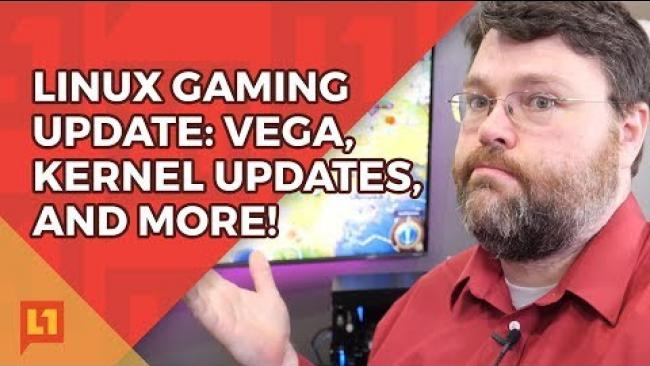 Embedded thumbnail for RX Vega 64 faster than 1080ti (On Linux)!? Yes, but...