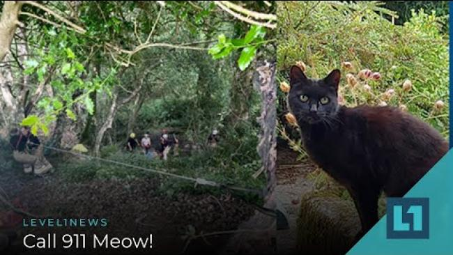 Embedded thumbnail for Level1 News August 27 2021: Call 911 Meow!