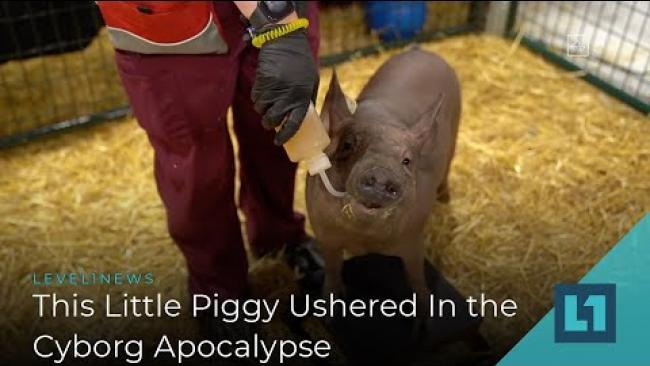 Embedded thumbnail for Level1 News September 2 2020: This Little Piggy Ushered In the Cyborg Apocalypse