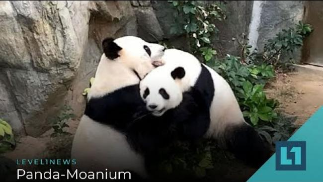 Embedded thumbnail for Level1 News April 17 2020: Panda-Moanium