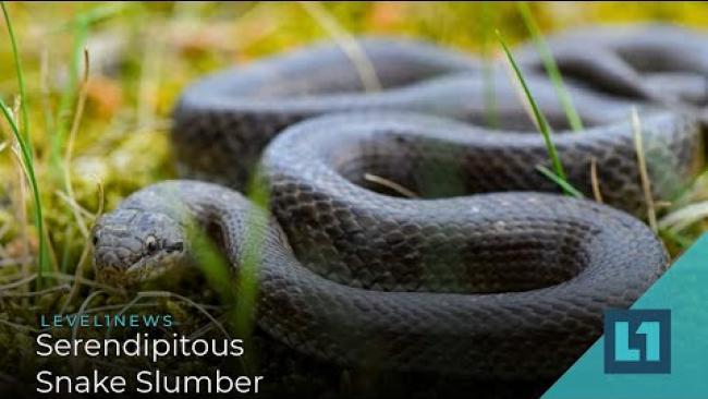 Embedded thumbnail for Level1News December 17 2020: Serendipitous Snake Slumber