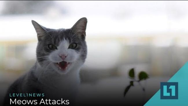 Embedded thumbnail for Level1 News July 28 2020: Meows Attacks